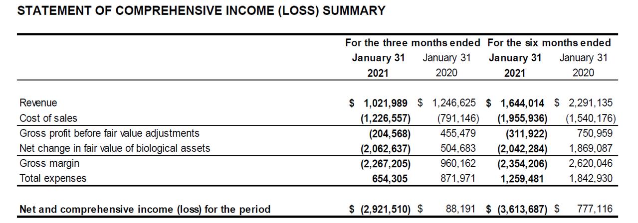 Q2 2021 Income Statement